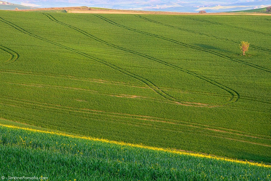 Geometries in Val d'Orcia
